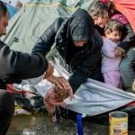Το θαύμα της ζωής στο βαλτότοπο της Ειδομένης