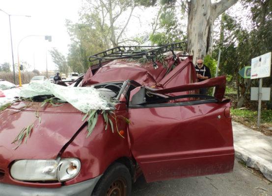 Δέντρο καταπλάκωσε και σκότωσε οδηγό στα Χανιά
