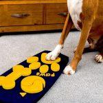 Έρχεται το πρώτο τηλεκοντρόλ για σκύλους