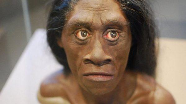Αυστραλοί επιστήμονες: Ο «επιδέξιος άνθρωπος» πρόγονος του «Χόμπιτ» της Ινδονησίας