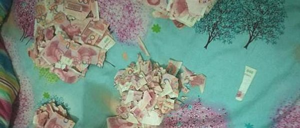 Αταξία που κόστισε: 5χρονος έκανε κομματάκια 6350 ευρώ