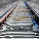 Τραγωδία στα Οινόφυτα: Τρένο παρέσυρε άνδρα