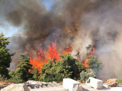 Πύρινος όλεθρος στον Κάλαμο: Κάηκαν σπίτια – Εκκενώθηκαν κατασκηνώσεις