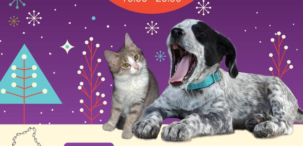 14ο Χριστουγεννιάτικο Bazaar του Σωματείου Περίθαλψης & Προστασίας Αδέσποτων Ζώων
