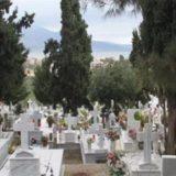 Εισαγγελική παρέμβαση για επέλαση τρωκτικών σε νεκροταφεία!