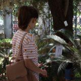"""Τελευταίες ημέρες της έκθεσης της Ελένης Παπαϊωάννου - """"Ο Κήπος του Φιλολόγου"""""""