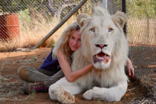Το Κορίτσι και το Λιοντάρι στους Κινηματογράφους