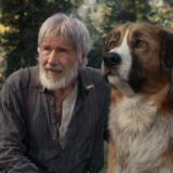 «Το Κάλεσμα της Άγριας Φύσης» (The Call of the Wild) στους Κινηματογράφους