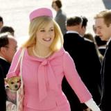 Αναβάλλεται η ταινία «Legally Blonde» για το 2022