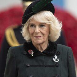 Δείτε το νέο επίσημο πορτρέτο της Camilla