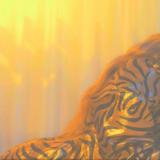 Ελένη Φουρέιρα: Το εντυπωσιακό visualizer για το νέο της hit «Δοκίμασέ Με»