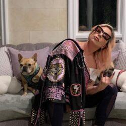 Lady Gaga: Στα δικαστήρια για την απαγωγή των σκυλιών της