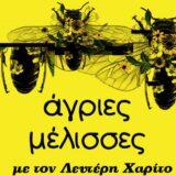 Oι «Άγριες Μέλισσες» στο SOUNDIS.GR του ΑΝΤ1