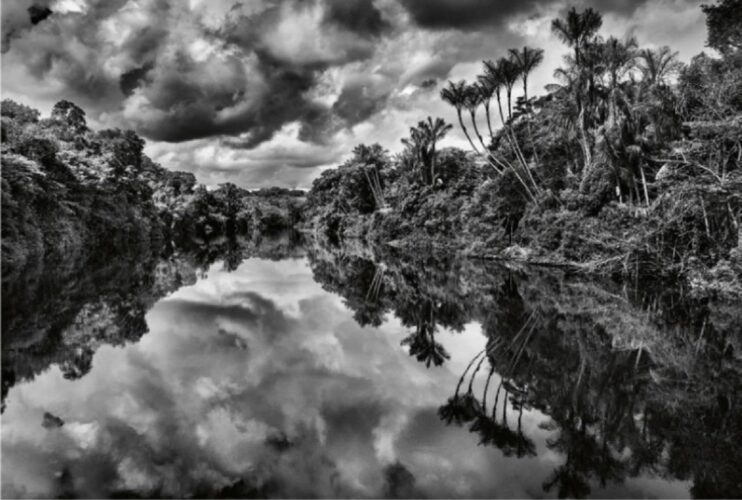 Jean-Michel Jarre | Amazonia | Κυκλοφορεί