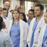 Το Grey's Anatomy ανανεώθηκε για 18η σεζόν: Επιστρέφει η Ellen Pompeo;