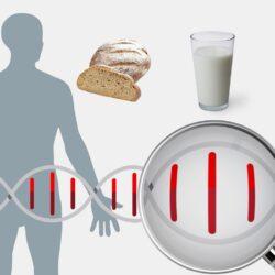«Nutrition-Joys and sorrows of eating» νέα σειρά ντοκιμαντέρ για την διατροφή στην ΕΡΤ3