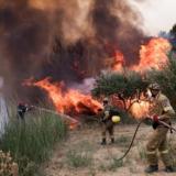 Φωτιές: Συλλήψεις για εμπρησμούς σε Χαϊδάρι και Αθήνα