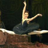 Ο Μαύρος Κύκνος | Gala από τα Μπαλέτα Bolshoi, Mariinsky - Έξτρα παράσταση